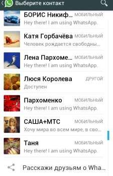 Контакты WhatsApp